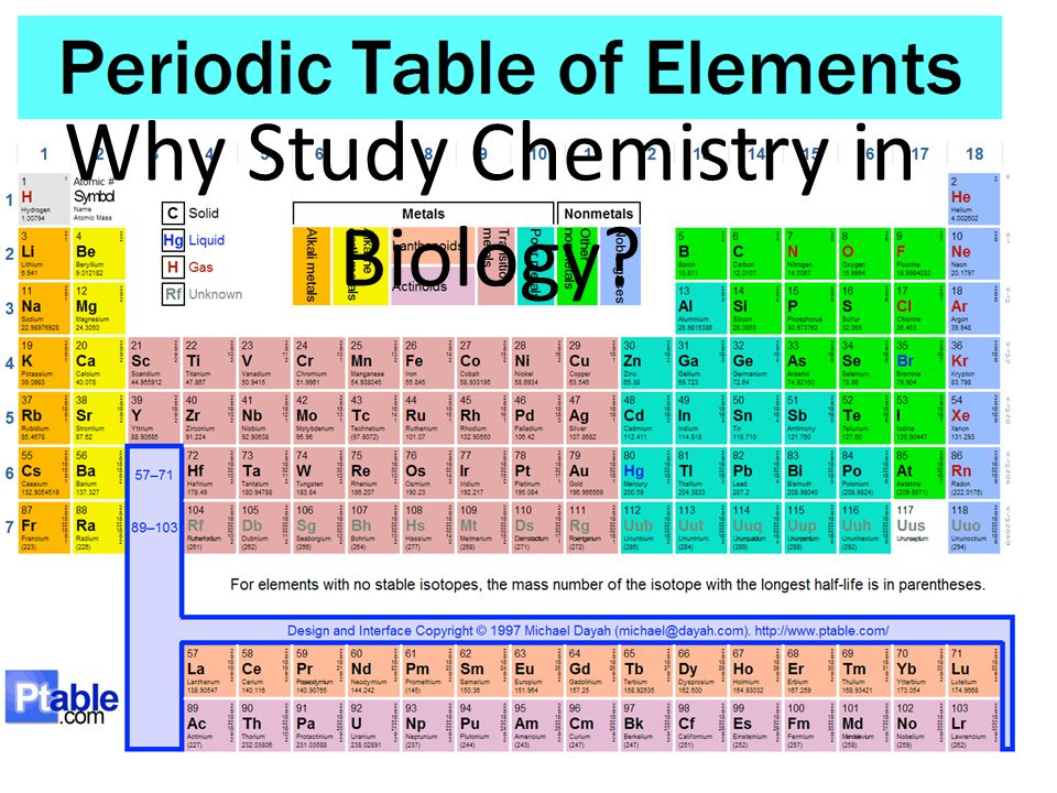 Why Study Chemistry in Biology