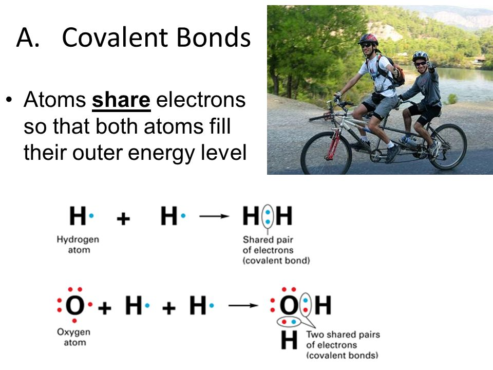 A. Covalent Bonds Atoms share electrons so that both atoms fill their outer energy level