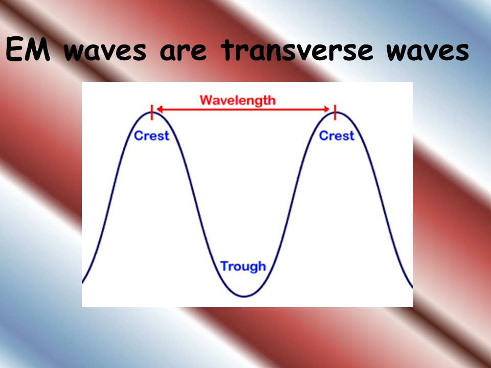 EM waves are transverse waves