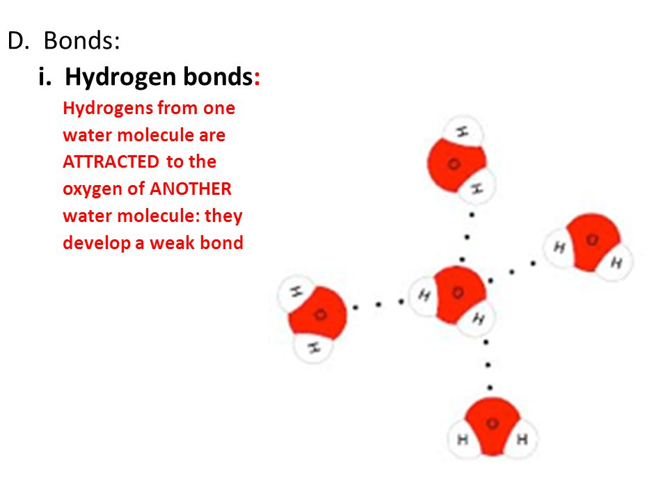 D. Bonds: i. Hydrogen bonds: Hydrogens from one water molecule are