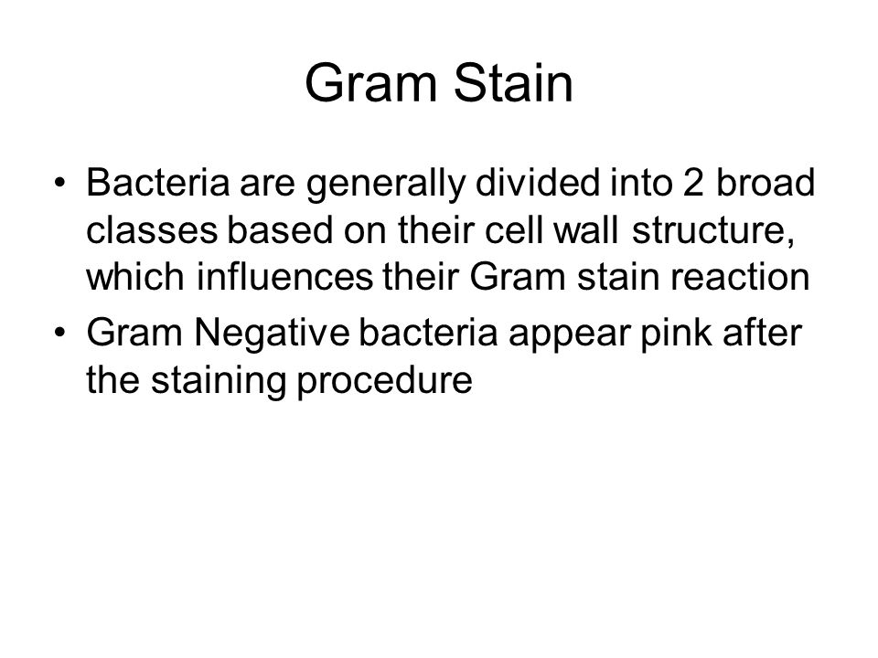 Gram Stain Bacteria are generally divided into 2 broad classes based on their cell wall structure, which influences their Gram stain reaction.