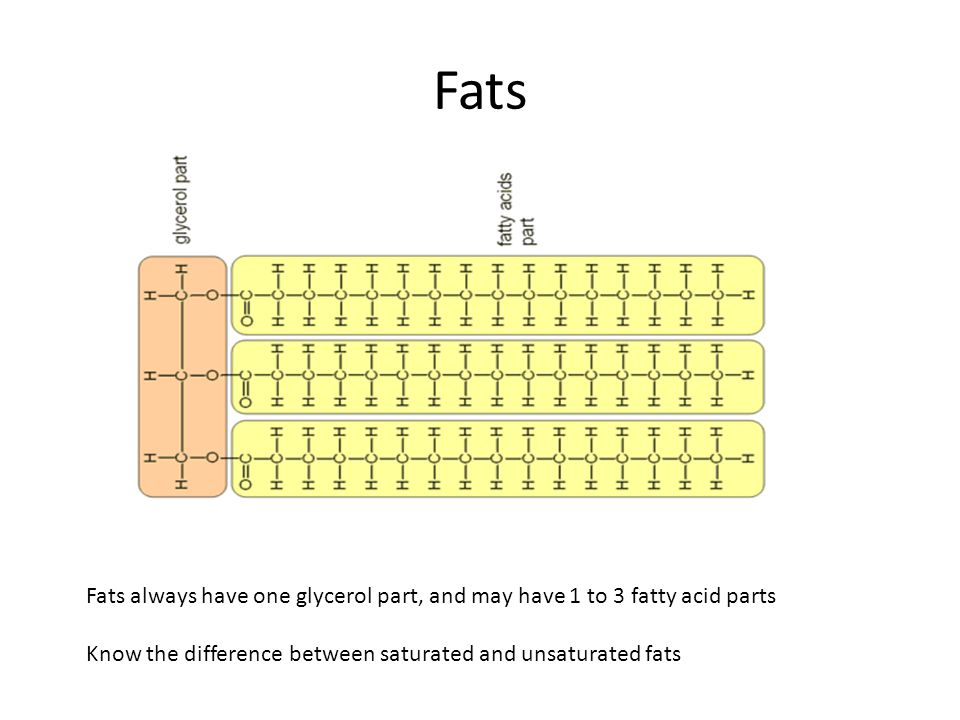 Fats Fats always have one glycerol part, and may have 1 to 3 fatty acid parts.