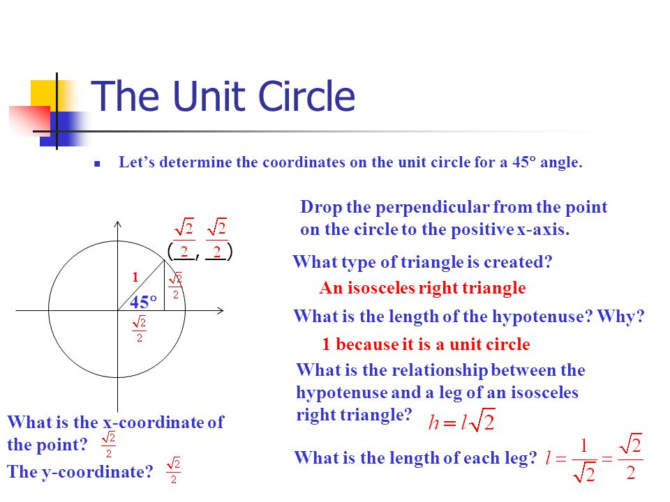 The Unit Circle Drop the perpendicular from the point