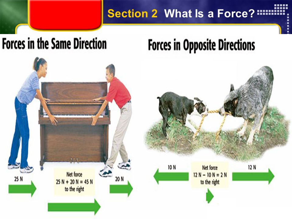 Section 2 What Is a Force