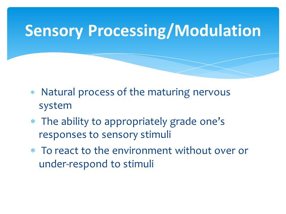 Sensory Processing/Modulation