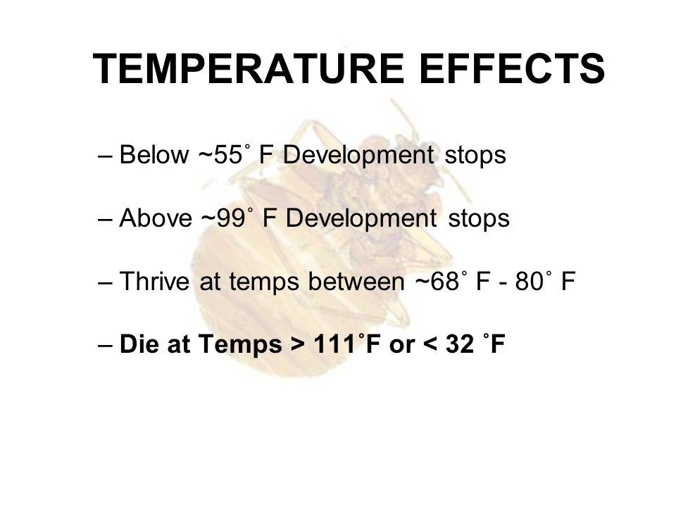 TEMPERATURE EFFECTS Below ~55˚ F Development stops