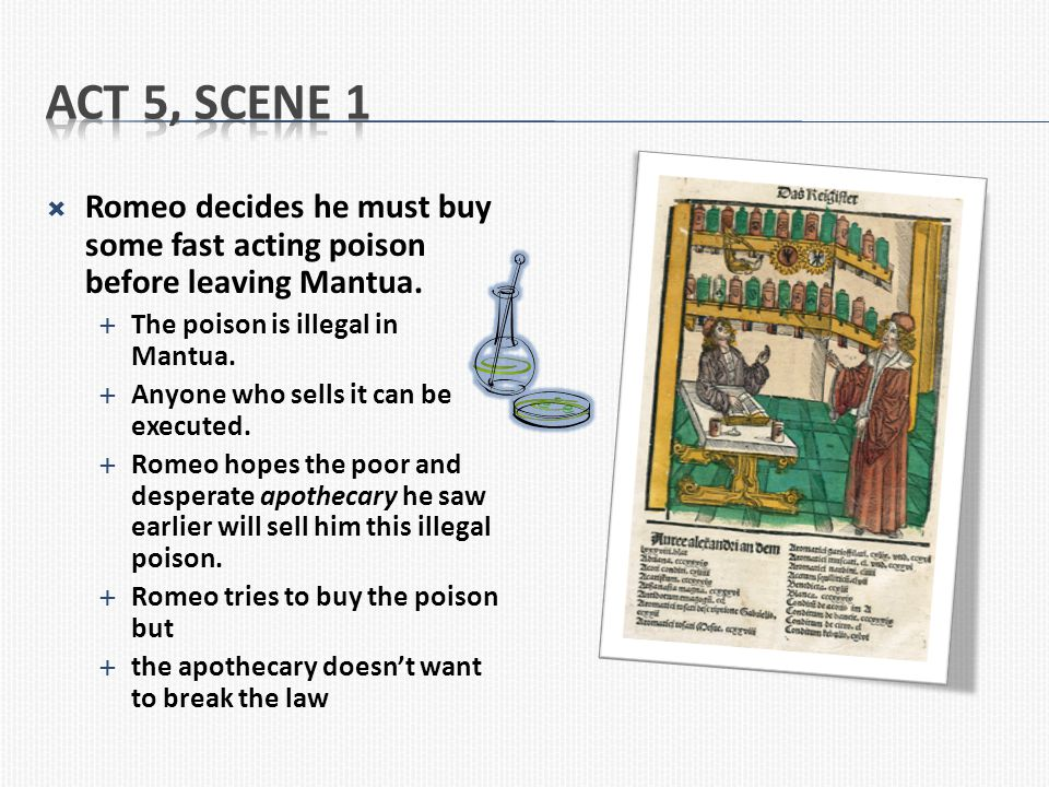 Act 5, Scene 1 Romeo decides he must buy some fast acting poison before leaving Mantua. The poison is illegal in Mantua.