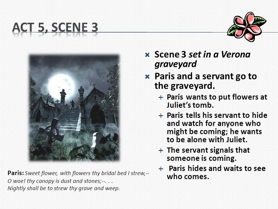 Act 5, Scene 3 Scene 3 set in a Verona graveyard