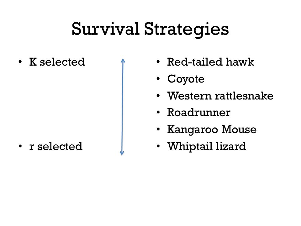 Survival Strategies K selected r selected Red-tailed hawk Coyote