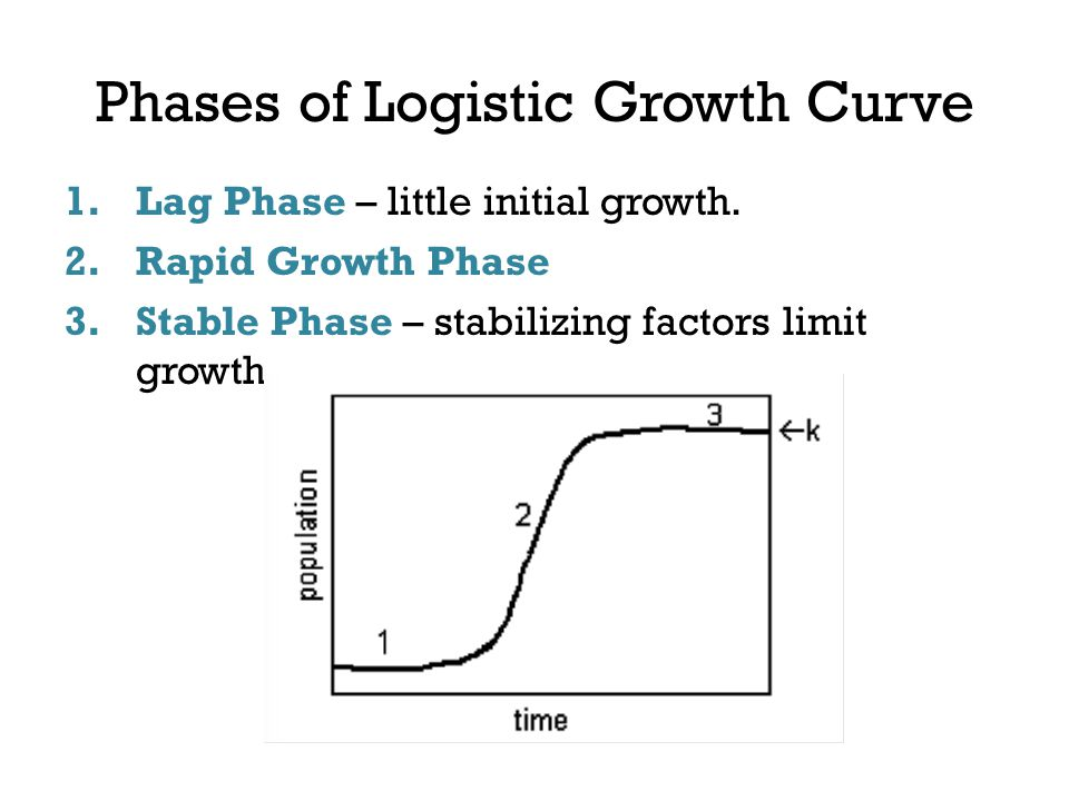 Phases of Logistic Growth Curve