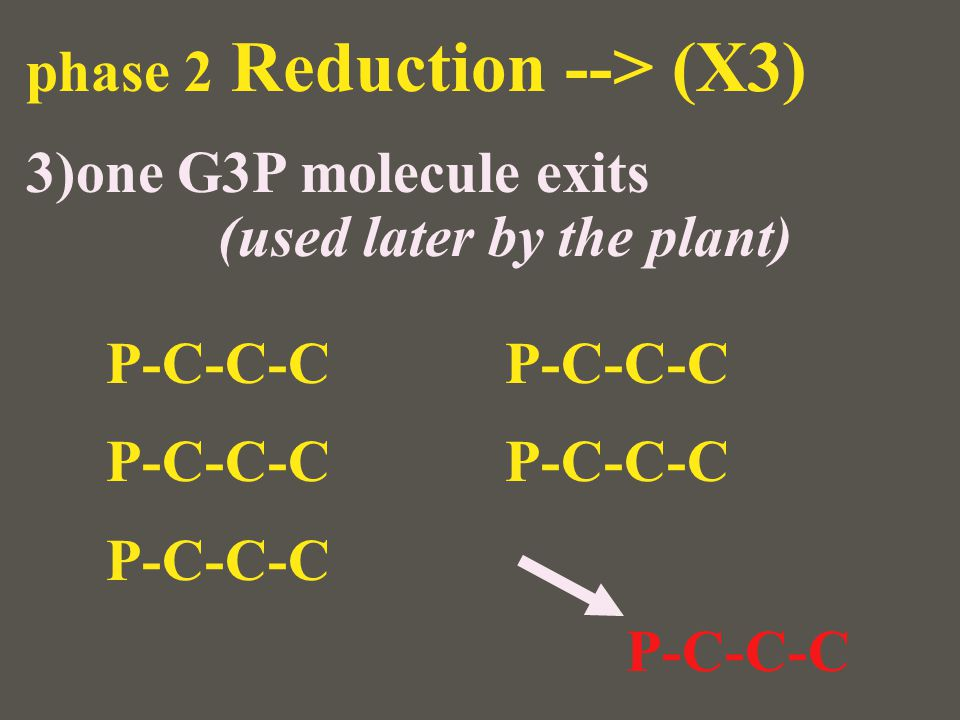 phase 2 Reduction --> (X3)