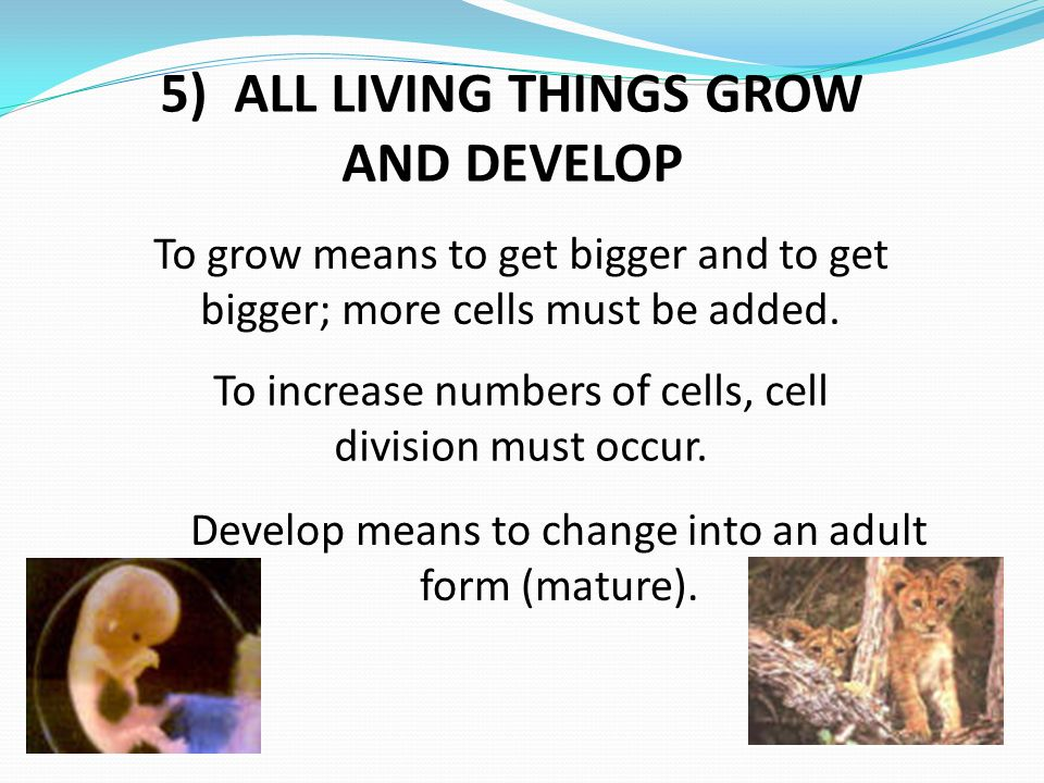 5) ALL LIVING THINGS GROW AND DEVELOP