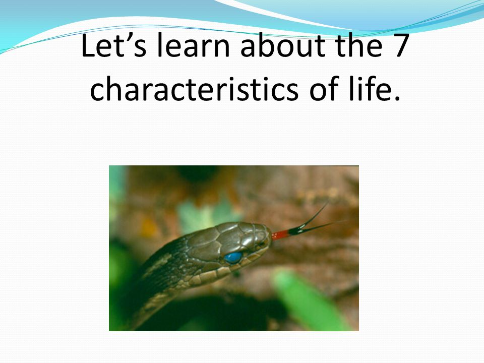 Let's learn about the 7 characteristics of life.