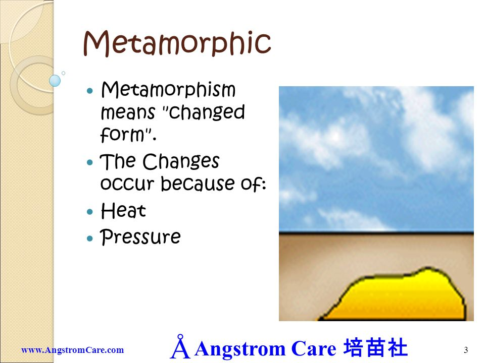 Metamorphic Metamorphism means changed form .