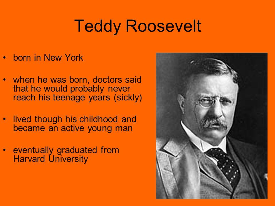 Teddy Roosevelt born in New York