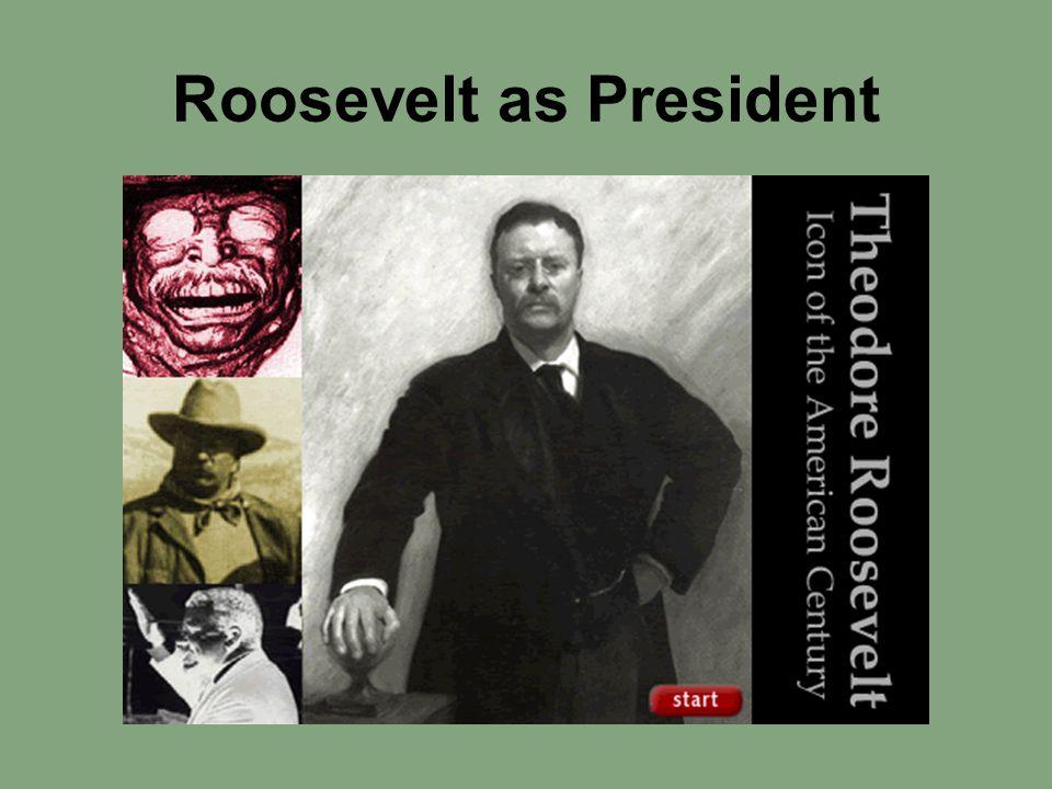 Roosevelt as President