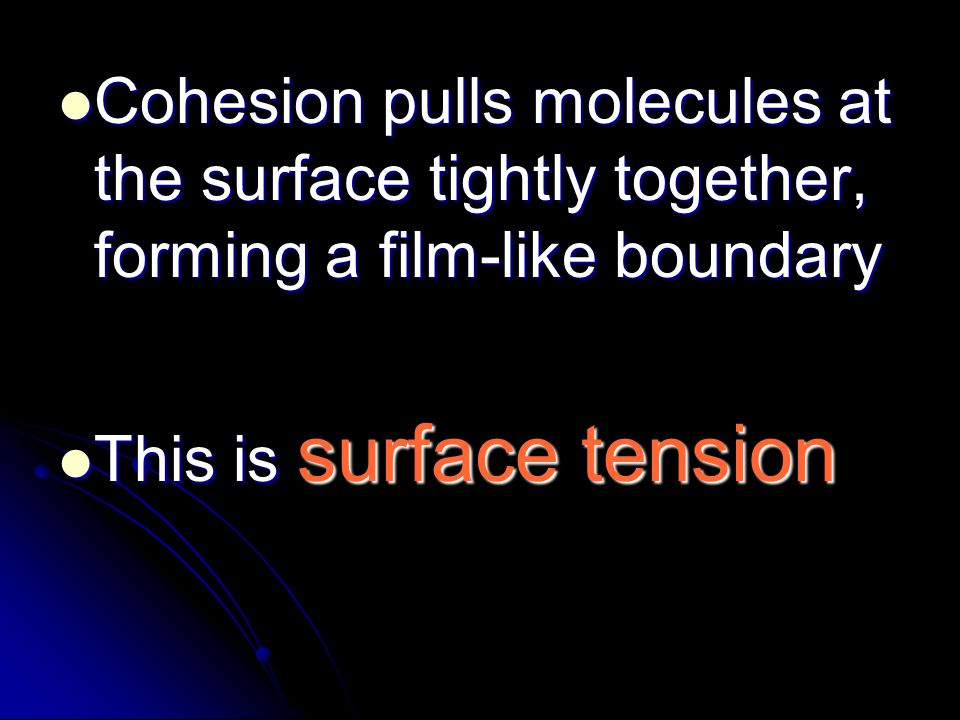 Cohesion pulls molecules at the surface tightly together, forming a film-like boundary