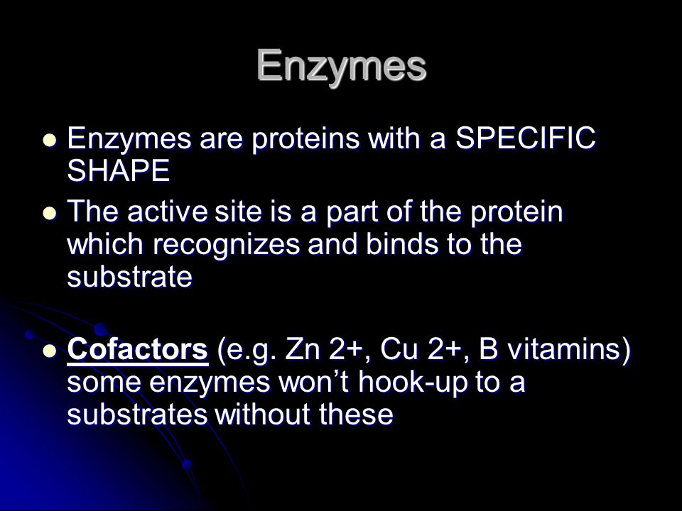 Enzymes Enzymes are proteins with a SPECIFIC SHAPE