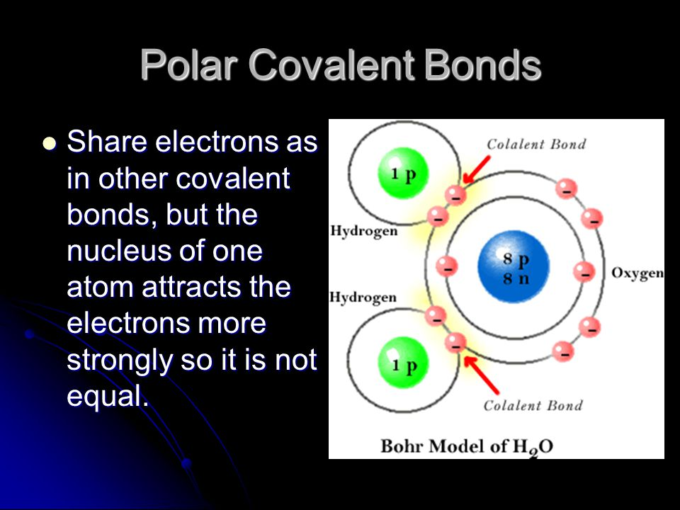 Polar Covalent Bonds Share electrons as in other covalent bonds, but the nucleus of one atom attracts the electrons more strongly so it is not equal.
