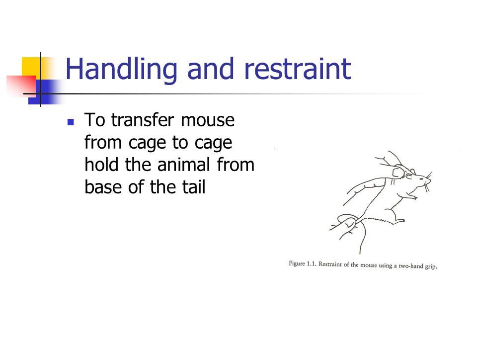 Handling and restraint