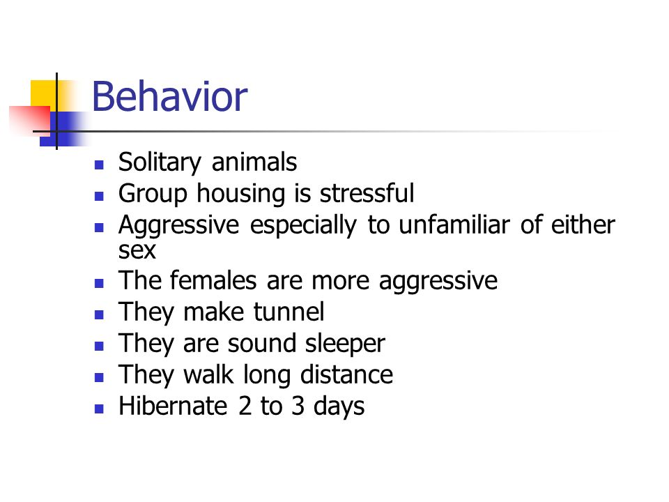 Behavior Solitary animals Group housing is stressful