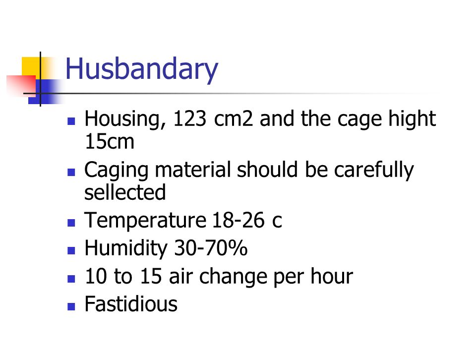 Husbandary Housing, 123 cm2 and the cage hight 15cm