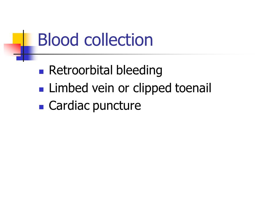 Blood collection Retroorbital bleeding Limbed vein or clipped toenail