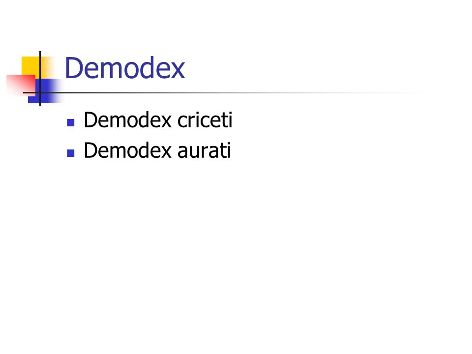 Demodex Demodex criceti Demodex aurati
