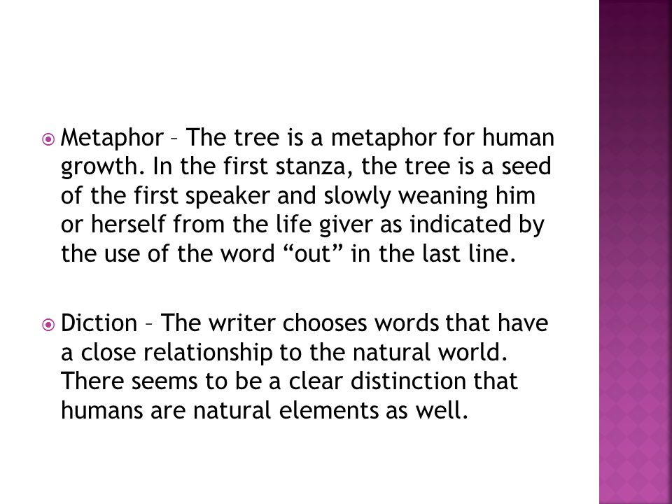 Metaphor – The tree is a metaphor for human growth