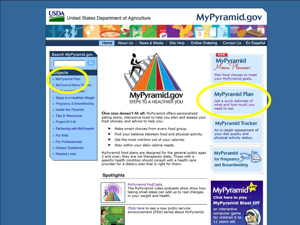The MyPyramid.gov website provides the most information for consumers and for professionals. This slide shows the MyPyramid.gov homepage. Users can access MyPyramid Plan, MyPyramid Tracker, and many other helpful tips for professionals and consumers.
