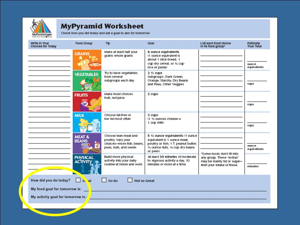 This shows one of the .pdf files that can be downloaded and printed from MyPyramid Plan. It is the meal tracking worksheet, which allows consumers to compare the foods they ate to their food group goals for the day.