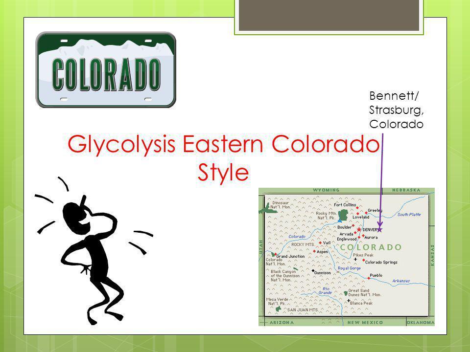 Glycolysis Eastern Colorado Style