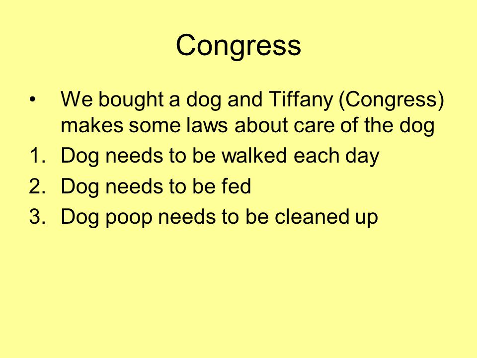 Congress We bought a dog and Tiffany (Congress) makes some laws about care of the dog. Dog needs to be walked each day.