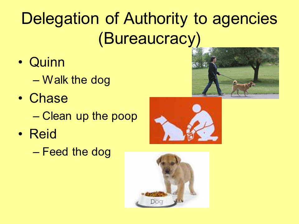 Delegation of Authority to agencies (Bureaucracy)