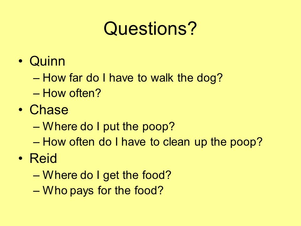Questions Quinn Chase Reid How far do I have to walk the dog