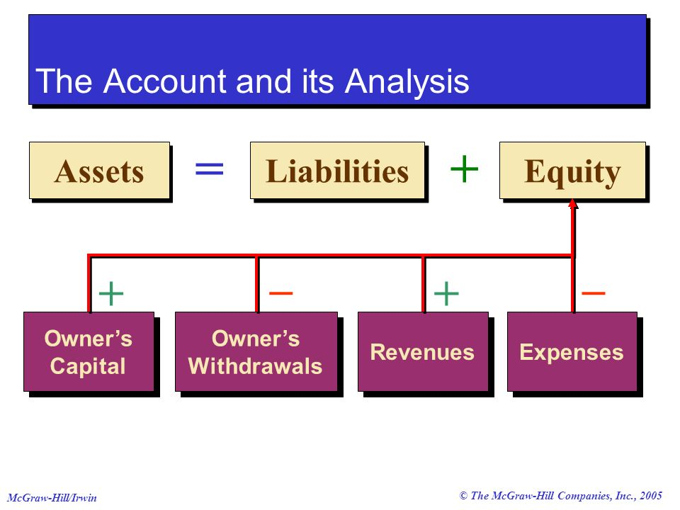 The Account and its Analysis