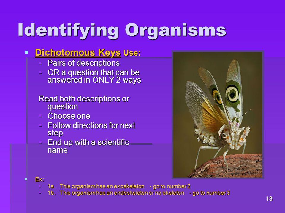 Identifying Organisms