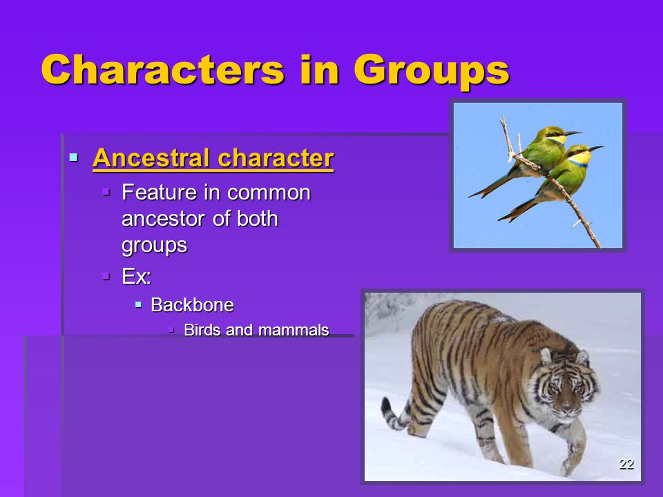 Characters in Groups Ancestral character