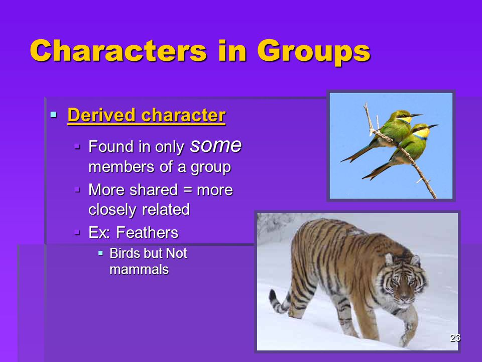 Characters in Groups Derived character