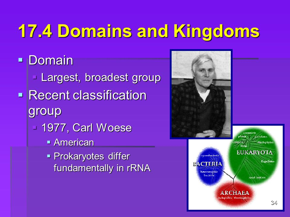 17.4 Domains and Kingdoms Domain Recent classification group