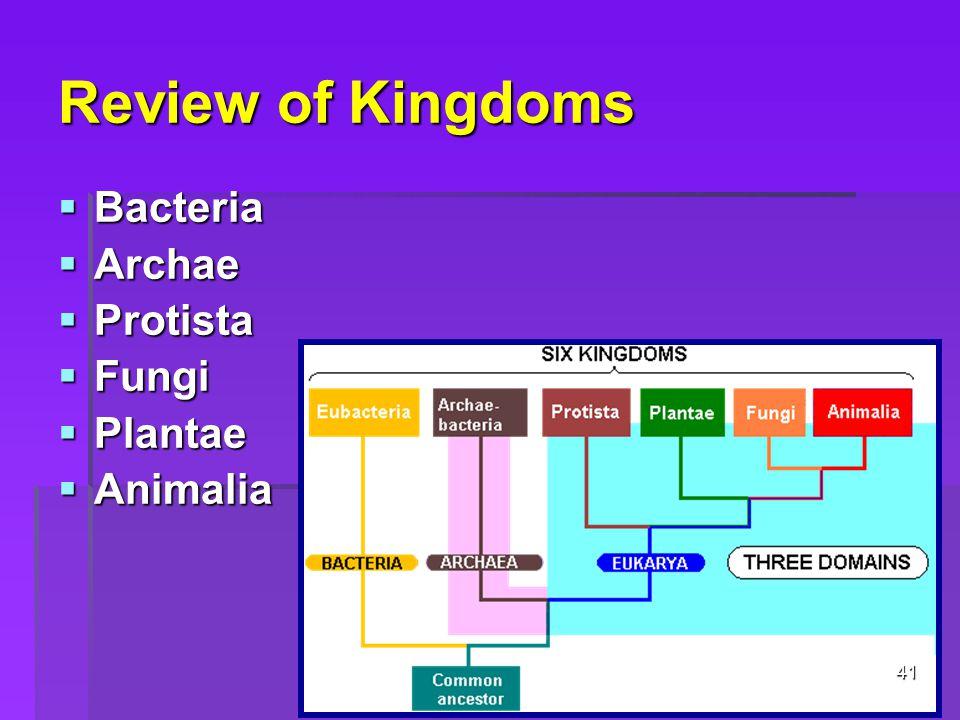Review of Kingdoms Bacteria Archae Protista Fungi Plantae Animalia