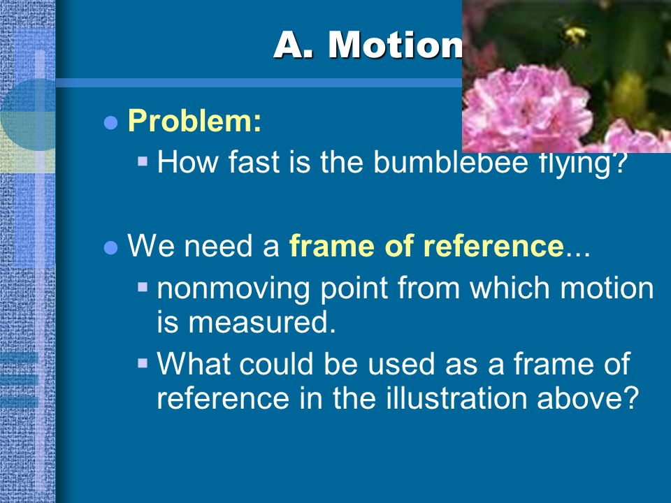 A. Motion Problem: How fast is the bumblebee flying