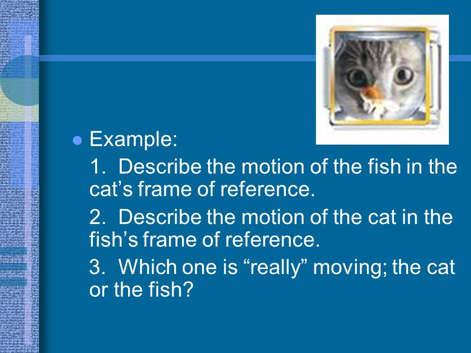 Example: 1. Describe the motion of the fish in the cat's frame of reference. 2. Describe the motion of the cat in the fish's frame of reference.