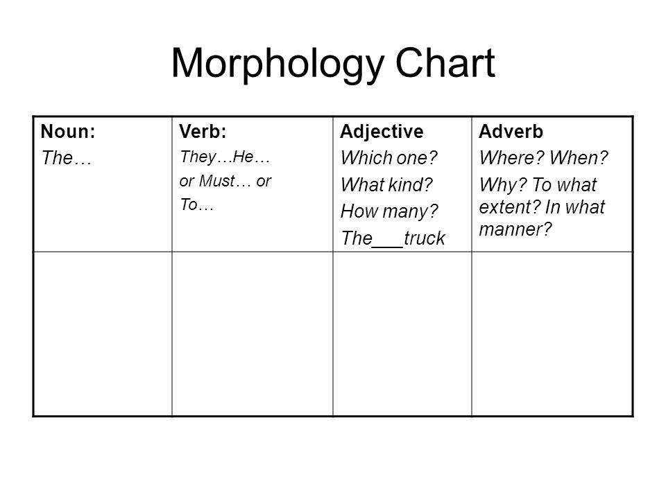 Morphology Chart Noun: The… Verb: Adjective Which one What kind