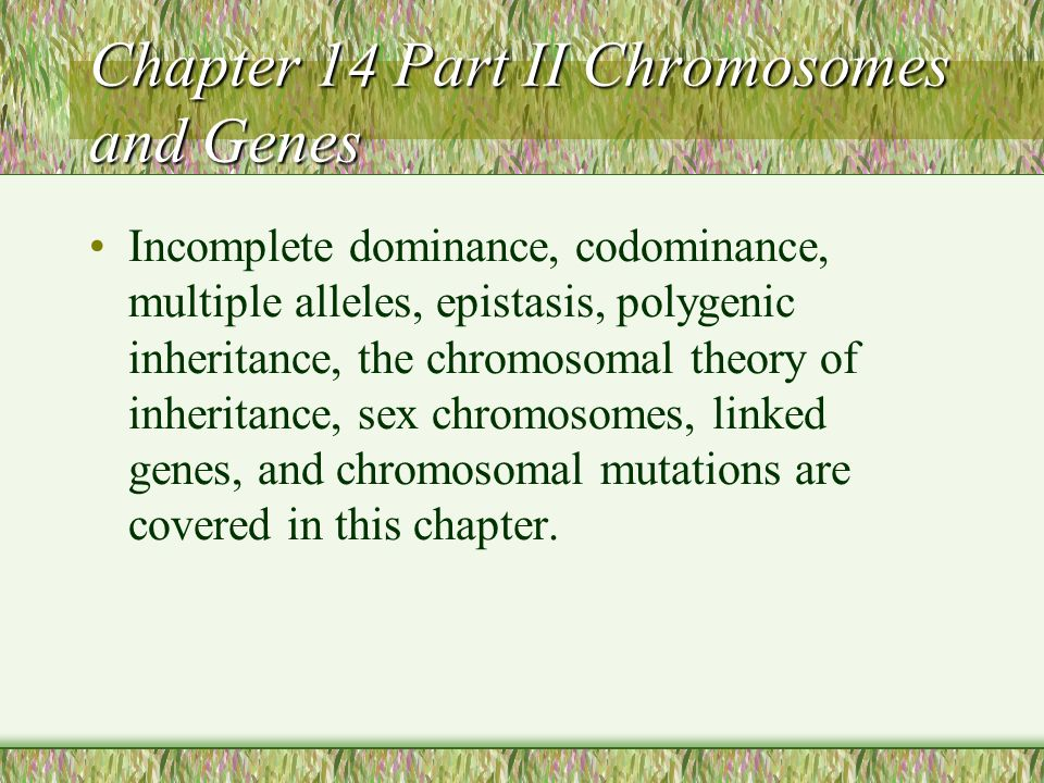 Chapter 14 Part II Chromosomes and Genes