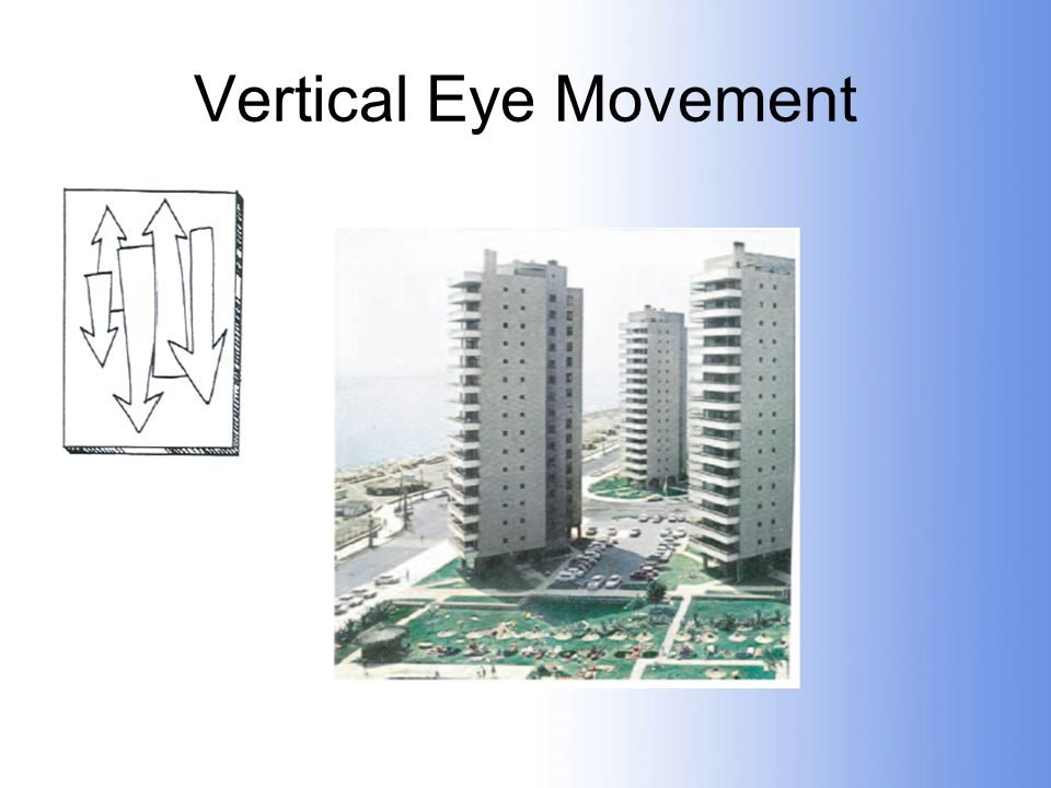 Vertical Eye Movement