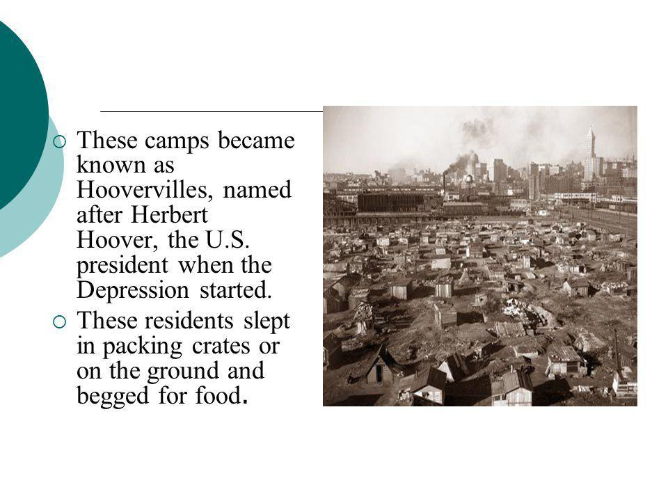 These camps became known as Hoovervilles, named after Herbert Hoover, the U.S. president when the Depression started.