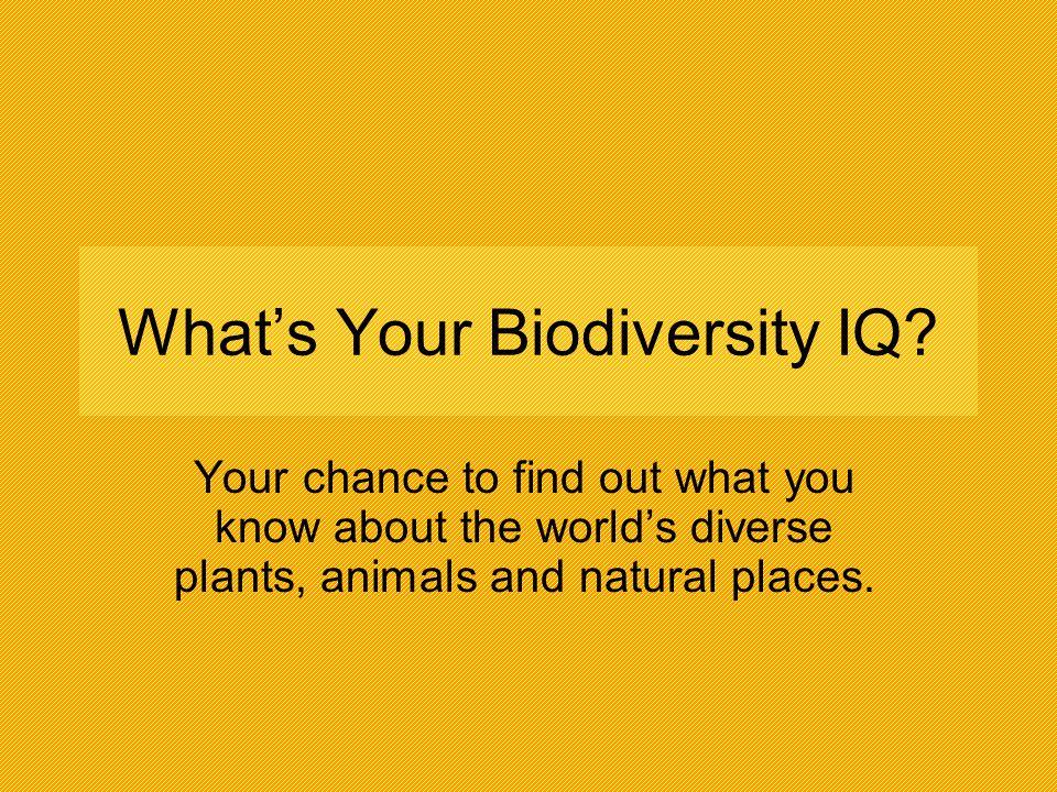 What's Your Biodiversity IQ