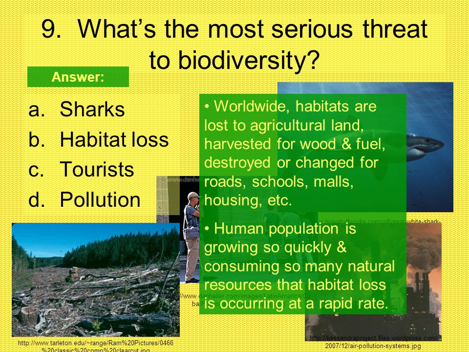 9. What's the most serious threat to biodiversity