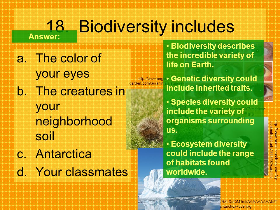 18. Biodiversity includes